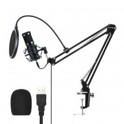 Blitzwolf BW-CM2 USB 192/24 studijinis ir transliavimo...